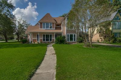 Tomball Single Family Home For Sale: 22803 River Birch Drive