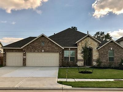 Spring Single Family Home For Sale: 5019 Gold Lantana Trl