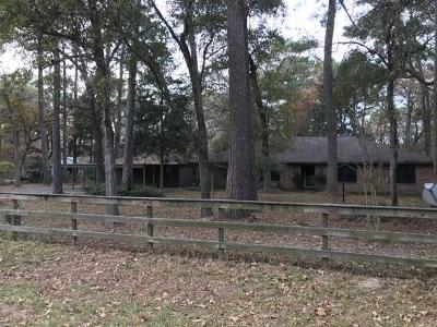 Hockley Single Family Home For Sale: 25328 S Clear Creek Road