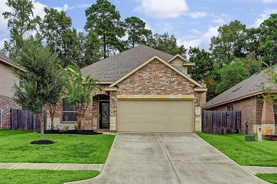 Conroe Single Family Home For Sale: 2430 Garden Falls Drive