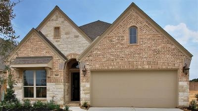 Tomball Single Family Home For Sale: 19407 Golden Lariat Drive