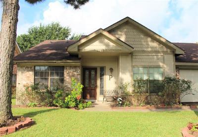Houston Single Family Home For Sale: 4247 Bridledon Lane