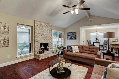 Katy Single Family Home For Sale: 923 Red Rock Canyon Drive