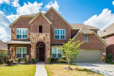 Riverstone Single Family Home For Sale: 4634 Rockton Hills Lane