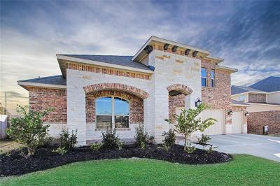 Spring Single Family Home For Sale: 5011 Gold Lantana Trail