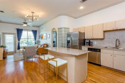 Houston Condo/Townhouse For Sale: 1441 East Street #202