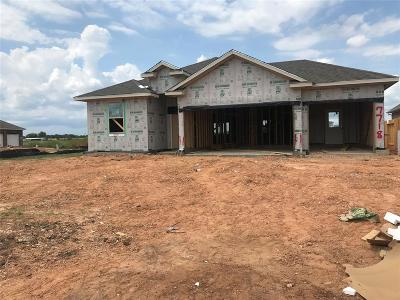 Grimes County Single Family Home For Sale: 7718 Bogie Lane