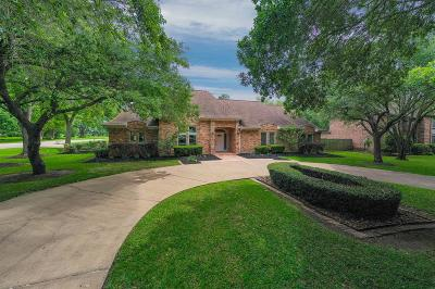 Friendswood Single Family Home For Sale: 201 Pine Willow Court