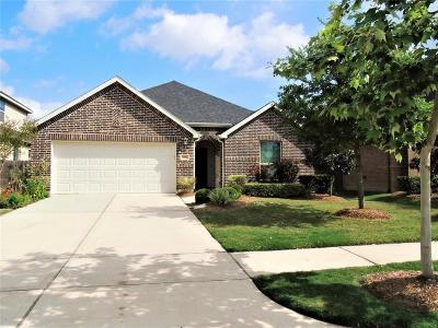 Conroe Single Family Home For Sale: 8462 Horsepen Bend Drive