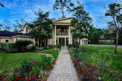 Houston Single Family Home For Sale: 9 Stillforest Street