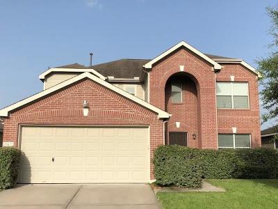 Houston Single Family Home For Sale: 19422 Remington Bend Drive