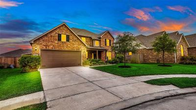 Katy Single Family Home For Sale: 5214 Kingship Court