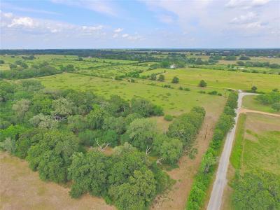 Lavaca County Farm & Ranch For Sale: 560 County Road 77b