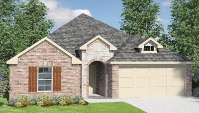 Pearland Single Family Home For Sale: 2607 Kaman Lane