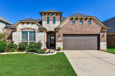 Rosenberg Single Family Home For Sale: 2730 Intrepid Trail