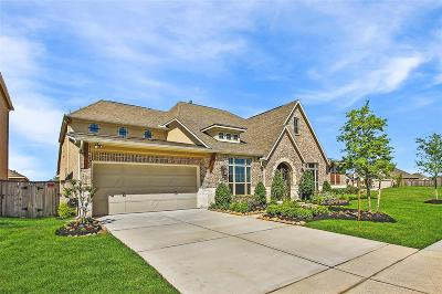 Cypress Single Family Home For Sale: 16619 Blue Nile Drive