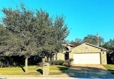 Houston Single Family Home For Sale: 8538 Kirkville Drive
