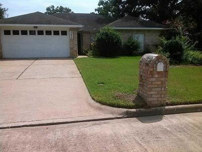 Tomball Single Family Home For Sale: 31210 Antonia Lane