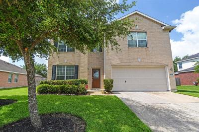 Pearland Single Family Home For Sale: 4204 Brazos Bend Drive