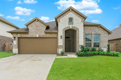 Conroe Single Family Home For Sale: 12117 Pearl Bay Lane