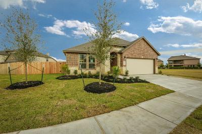 Katy Single Family Home For Sale: 28711 Bonham Park