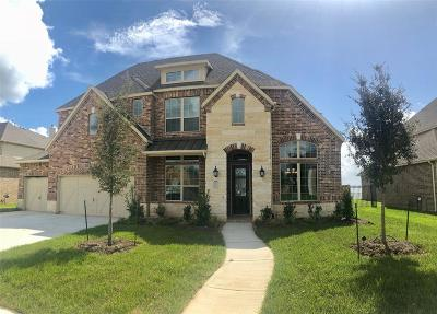 Houston Single Family Home For Sale: 8618 San Juanico Street