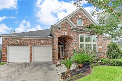 Sugar Land Single Family Home For Sale: 4138 Regal Stone Lane