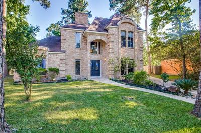 The Woodlands Single Family Home For Sale: 28 Hornsilver Place
