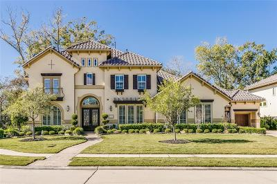 Sugar Land Single Family Home For Sale: 5022 Tillbuster Ponds Court