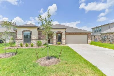 Manvel Single Family Home For Sale: 7 Coconut Palms Court