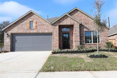 Tomball Single Family Home For Sale: 21823 Rose Maris