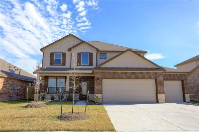 Manvel Single Family Home For Sale: 52 Alyssa Palms Drive