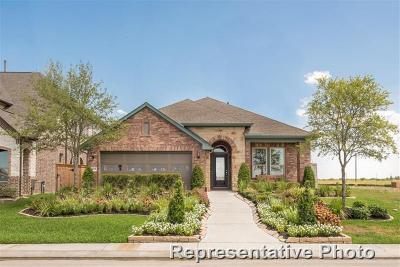 Conroe Single Family Home For Sale: 273 Pleasant Hill