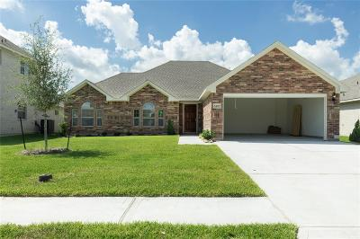 League City Single Family Home For Sale: 6409 Black Hills Trail