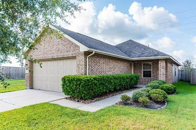 Houston Single Family Home For Sale: 2842 Maybrook Hollow Lane