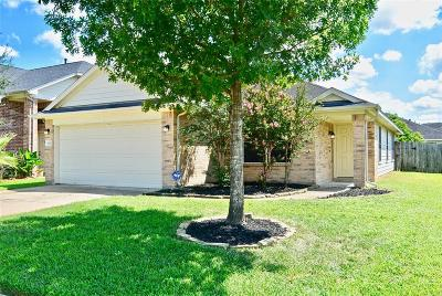 Katy Single Family Home For Sale: 19627 Adelaide Meadows Court