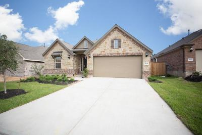 Single Family Home For Sale: 2624 Bright Rock Lane