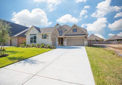 Porter Single Family Home For Sale: 3318 Dovetail Hollow Lane