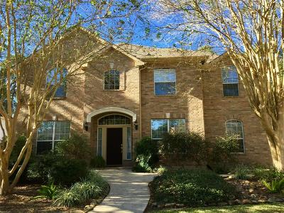 Single Family Home For Sale: 16927 Windrow Drive