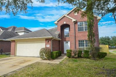 Houston Single Family Home For Sale: 16614 Great Oaks Glen Drive