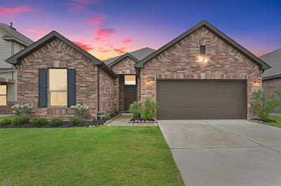 Pearland Single Family Home For Sale: 3137 Morgan Meadow Lane