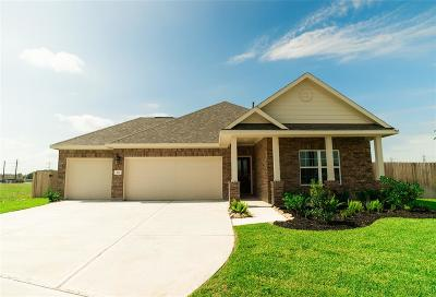 Alvin Single Family Home For Sale: 307 Vineyard Court