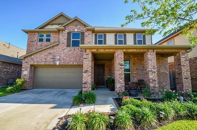 Katy Single Family Home For Sale: 24018 Buffalo Cove Lane