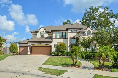Sugar Land Single Family Home For Sale: 5606 Rocky Ponds Court