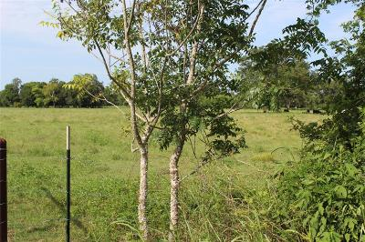 Residential Lots & Land For Sale: N Alabama Road