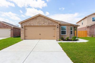 Texas City Single Family Home For Sale: 2308 Lagan Lane
