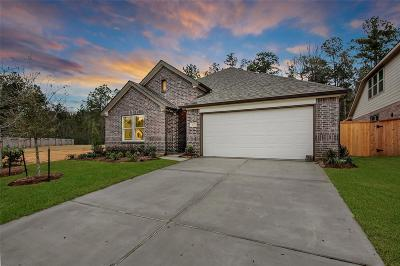 Conroe Single Family Home For Sale: 3005 Quarry Springs Drive