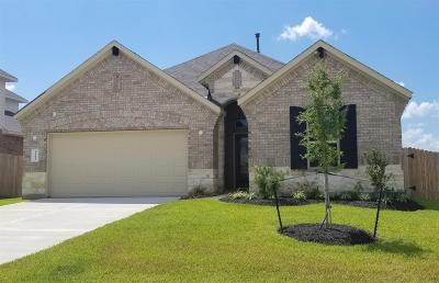 Conroe Single Family Home For Sale: 14221 Rainier Peak Crossing