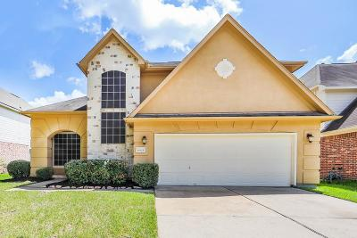 Sugar Land Single Family Home For Sale: 15623 Edgemere Court