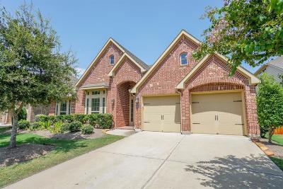 Katy Single Family Home For Sale: 10214 Kessler Cove Lane